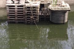 Fischhotel-im-Testgewässer